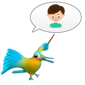 SKIDOS Kingfisher