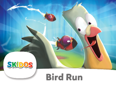 SKIDOS BIrd Run Cool Math Game