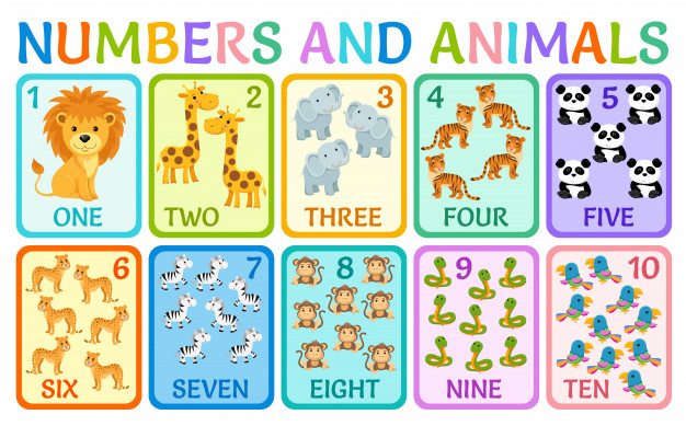 Learn first graders math vocabulary